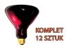 Promiennik podczerwieni 250 W czerwony HardGlass 12 szt.